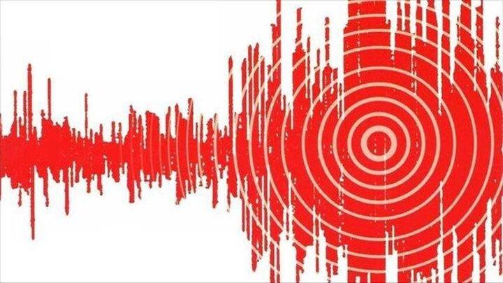 زلزله مهیب بوشهر را لرزاند