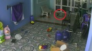 لحظه وحشتناک حمله مار شاه کبرا به یک کودک / فیلم