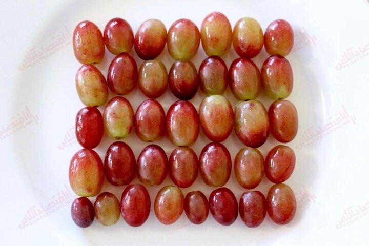 فواید باورنکردنی انگور قرمز برای پوست و مو