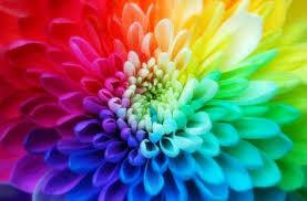 دخترهای نوجوان چه رنگ هایی را دوست دارند؟