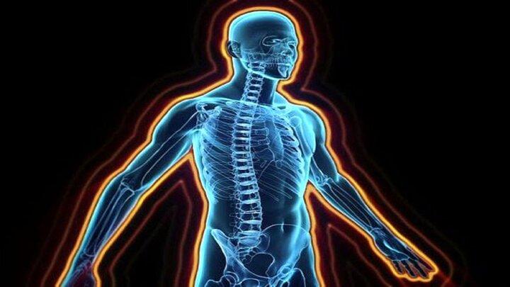 حقایقی جالب درباره بدن انسان که با شنیدن آن شگفتزده میشوید!