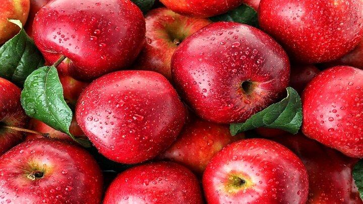 مضرات باورنکردنی زیادهروی در مصرف سیب؛ از مشکلات گوارشی و مسمومیت تا اضافه وزن