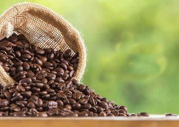 سرقت مردم از کامیون واژگونشده حامل قهوه / فیلم