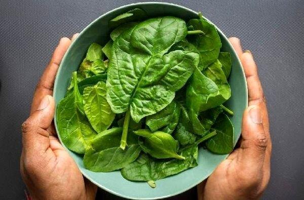 کاهش وزن و فشار خون با مصرف این سبزی پرخاصیت