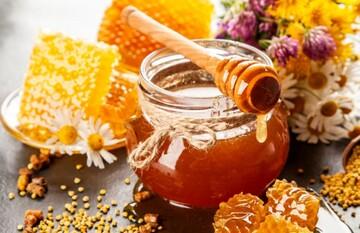 مضرات زیادهروی در مصرف عسل که از آن بیاطلاعید!