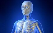 حقایقی جالب و خواندنی درباره بدن انسان که با شنیدن آن شگفتزده میشوید!