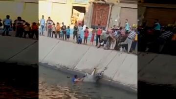 حمله گاو به مردم پس از نجاتش از رودخانه / فیلم