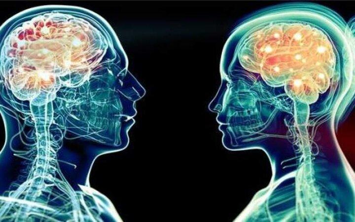 حقایق جالب درباره تفاوت مغز زنان با مردان