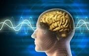 کارهایی که مغز انسان را کوچک میکنند