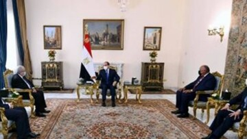 مصر و الجزائر برای حمایت از رییسجمهور تونس توافق کردند