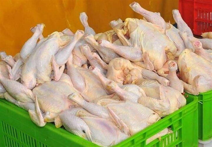 مرغ ۱۰۵ درصد و برنج ۹۰ درصد گران شد!