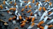 ربات جمع آوریکننده ته سیگار از لب ساحل دریا / فیلم