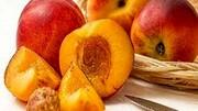 عوارض خطرناک زیادهروی در مصرف هلو؛ از افزایش فشار خون تا سرگیجه، افسردگی و تاری دید