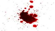 مرد جوان در کرج وسط خیابان کشته شد