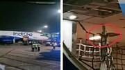 ترس شدید مسافران به دلیل حضور مار در هواپیما / فیلم