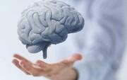 محققان انگلیسی تاثیر خطرناک کرونا را بر مغز کشف کردند