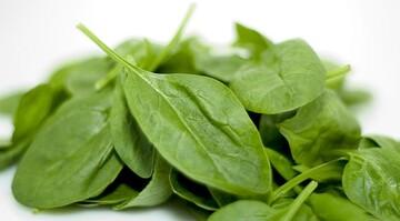 درمان کمخونی و زخم معده با مصرف این سبزی پرخاصیت