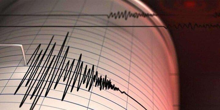 وقوع زمین لرزه ۷.۲ ریشتری در هائیتی/ ۲۹ نفر کشته شدند