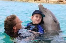 درمان اوتیسم با دلفینها