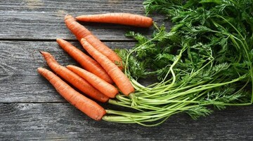 فواید فراوان برگ هویج برای سلامتی؛ از تنظیم فشار خون تا سمزدایی بدن