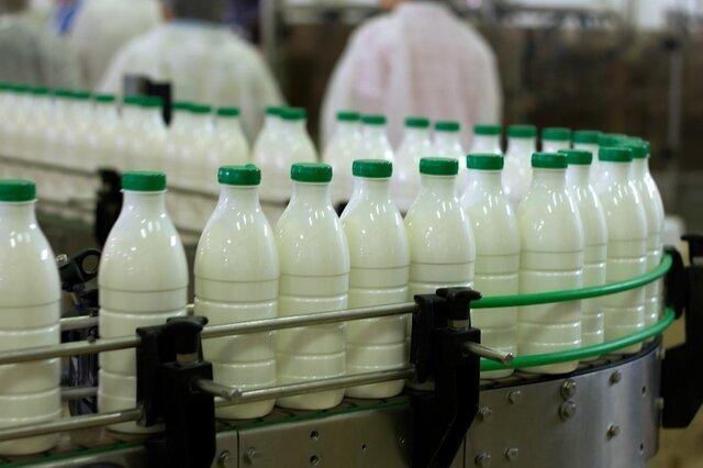 آلودگی میکروبی یک برند معروف شیر تایید شد