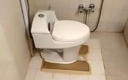 غافلگیری عجیب مرد در توالت! / عکس