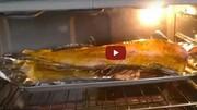 ویدیو باورنکردنی از تکان خوردن عجیب ماهی در داخل فر اجاق گاز!