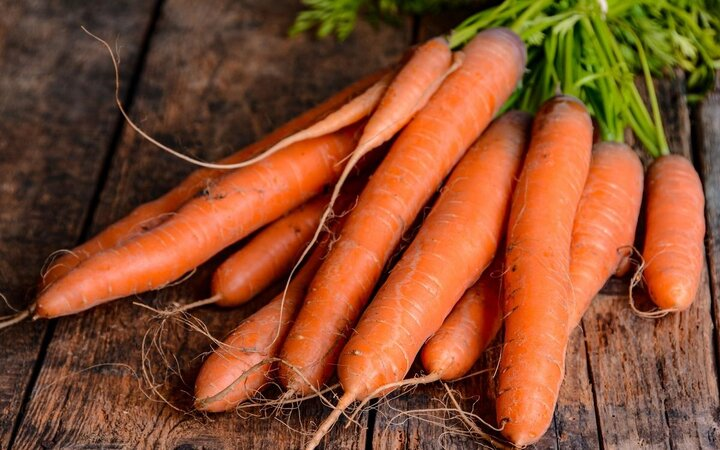 قیمت هویج هفته آینده به زیر ۱۰ هزار تومان میرسد
