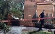 ویدیو دلخراش از لحظه مرگ زن ۶۶ ساله به دلیل سقوط درخت نخل