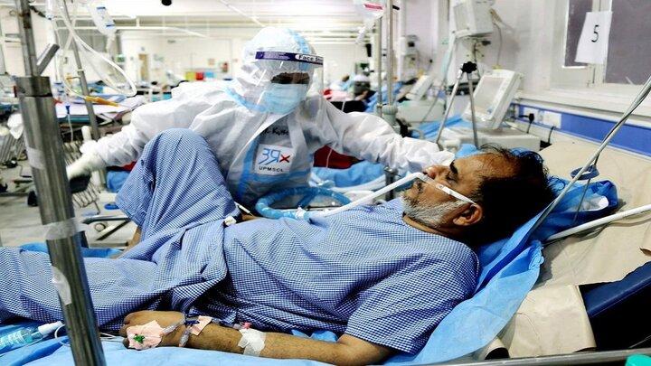 ابتلای ۲۰ نفر به قارچ سیاه  در مشهد