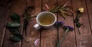خواص شگفتانگیز چای انبه برای سلامتی؛ از کنترل دیابت و بهبود زخم معده تا پیشگیری از سرطان