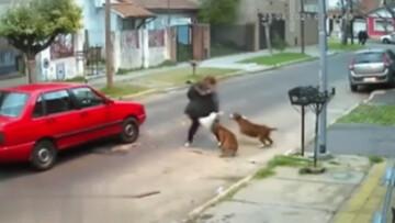 حمله سگهای وحشی به زن آرژانتینی در خیابان / فیلم