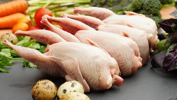 فواید فراوان گوشت و تخم بلدرچین؛ از درمان کمخونی تا رفع مشکلات گوارشی و تنفسی