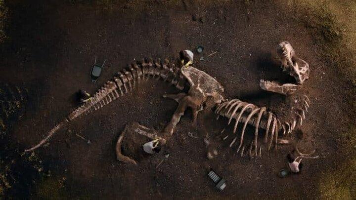 حقایقی جالب و عجیب درباره دایناسورها که با شنیدن آن شگفتزده میشوید! / تصاویر