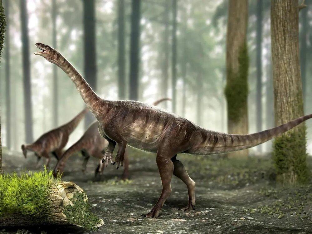 حقایقی شگفت انگیز از دایناسورها که نمیدانستید