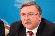 استقبال اولیانوف از سخنان تلویزیونی رئیسی / ایران برای گفتگوهای برجامی آماده است