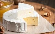 گران فروشی ۲۰۰ درصدی سویا / پنیر باز هم گران شد