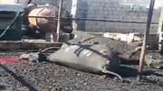 زنده زنده سوختن حیوانات بیگناه یک گاوداری در خوزستان! / فیلم