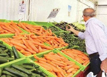ادامه روند نزولی قیمت هویج / هر کیلو هویج در بازار چند؟