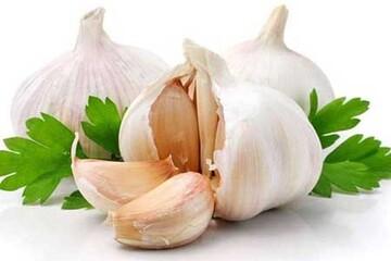 خواص معجزهآسای مصرف روزانه یک حبه سیر با شکم خالی