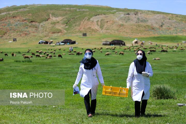 افراد بالای ۱۸ سال در کدام مناطق ایران میتوانند واکسن کرونا بزنند؟
