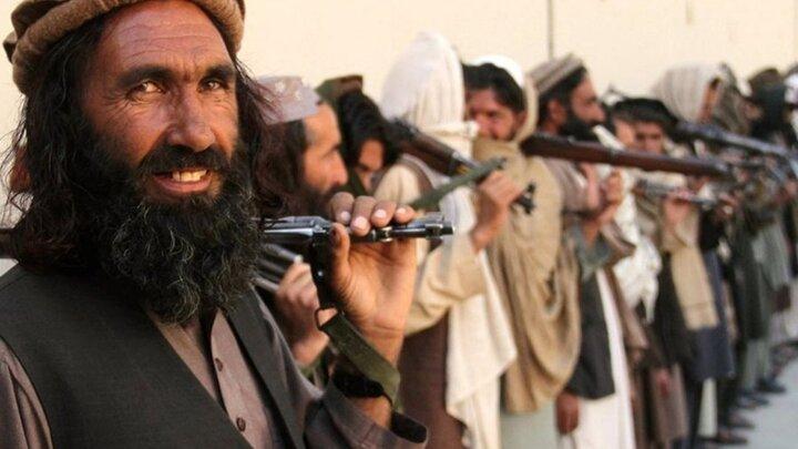 ۱۴ عضو دولت طالبان تروریست تحت تعقیب هستند!