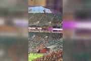 نجات گربه بازیگوش پس از سقوط هولناک از سقف استادیوم / فیلم