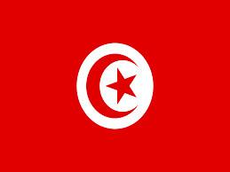 جوان تونسی مقابل ساختمان وزارت کشور خودش را آتش زد