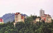 یک سوم جنگلهای استانهای شمالی ویلا شد / قیمت هر متر مسکن در شمال چند؟