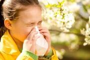 معرفی ۴ آنتیهیستامین طبیعی