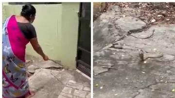 بیرون کردن جالب مار کبرا از خانه توسط زن شجاع / فیلم