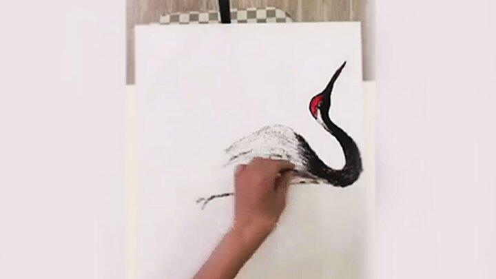 خلق آثار هنری با موی مشتریان توسط آرایشگر هنرمند / فیلم