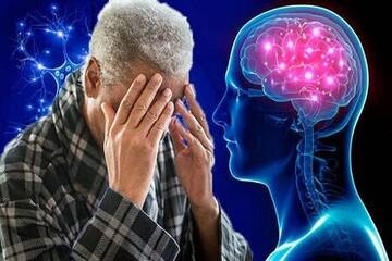 یافته های جدید محققان درباره علت بیماری آلزایمر