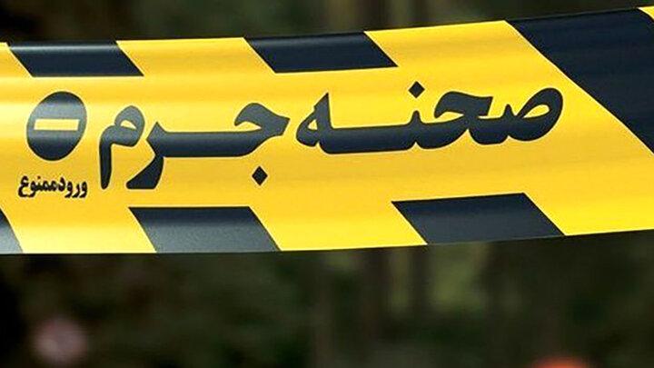 ۲ آدمکش اجارهای در ولنجک مردی را کشتند